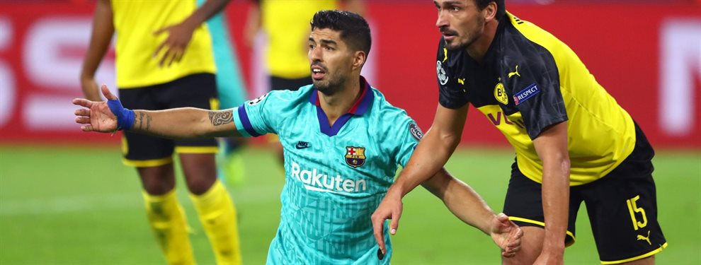 Luis Suárez le ha dicho al Barça que no fiche a Rodrigo Bentancur, al que no ve preparado