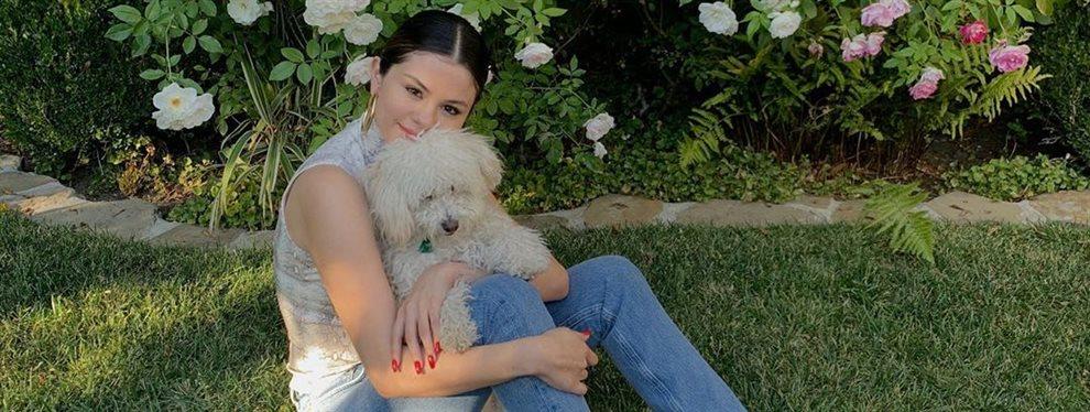 La cantante Selena Gómez se pega todos los lujos que su posición de famosa y artista le dan se compra una cama de tamaño king size para que nos quede claro