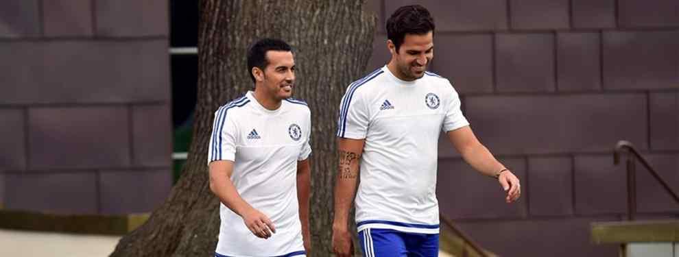 Invitan a Cesc y Pedro a abandonar el Chelsea y ya buscan equipo en España
